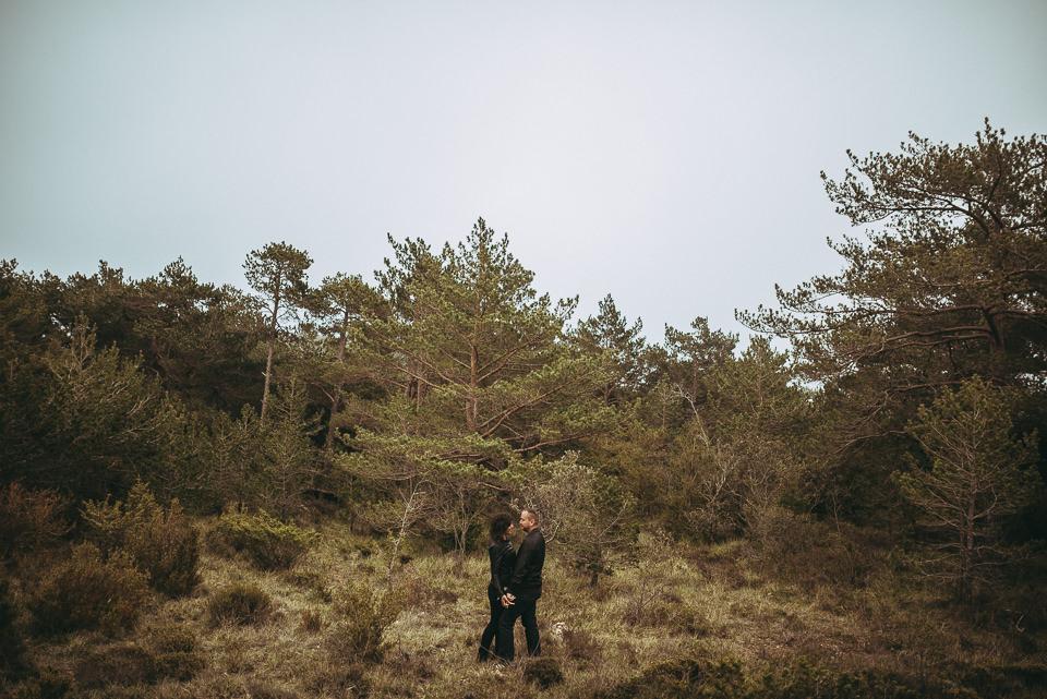 preboda en bosque