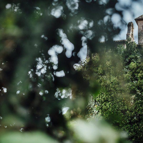 Boda en Castillo de Tamarit - Cecilia + Pieter